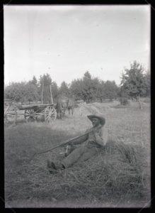 Bill Jennings loading hay (1909-07-29)